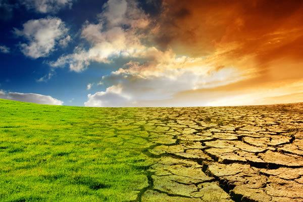 Древнее изменение климата влияло на эволюцию человека