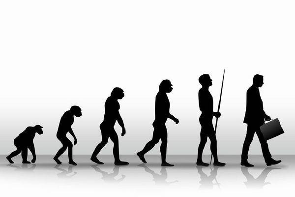 Выносливость человека позволила ему эволюционировать