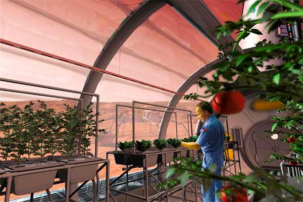 Ученые нашли способ выращивать растения в космосе