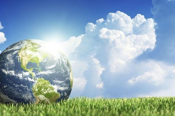 Направления экологии