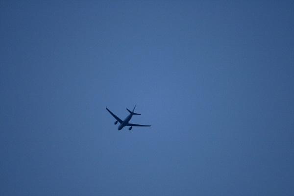 Аэрофобия: можно ли избавиться от страха летать