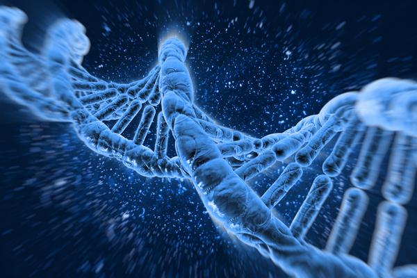 Одиночная мутация могла вызвать многоклеточную жизнь
