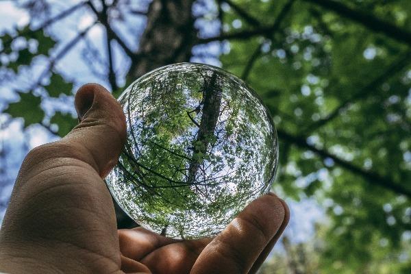 Как спасти планету, не выходя из дома