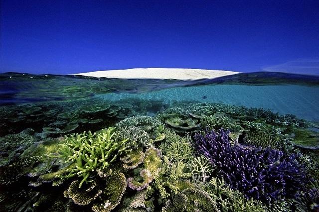 Самые красивые экологические памятники ЮНЕСКО. 3086.jpeg