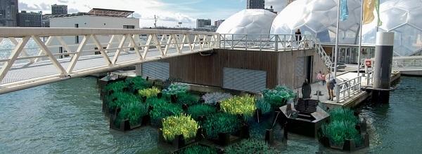 В Нидерландах появился парк на воде из переработанного пластика