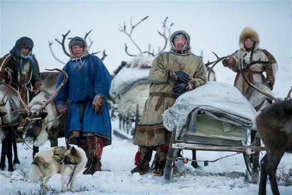 Почему жизнь северян короткая