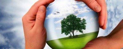 7 способов внести вклад в защиту экологии планеты