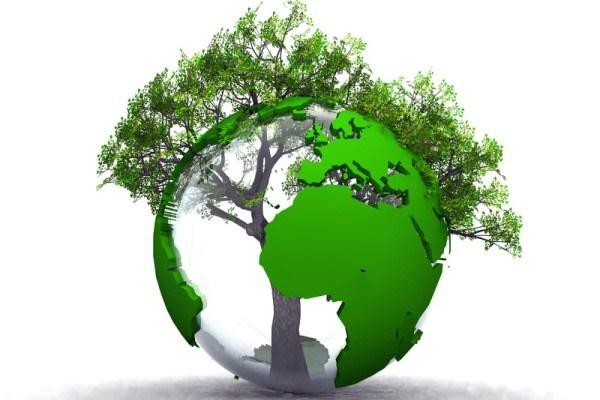 Спасет ли планету концепция