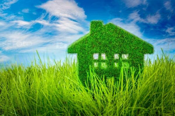 Как научиться жить экологично в своем доме