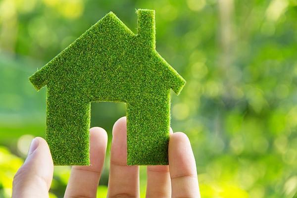 Экологически чистая мебель: миф или реальность?