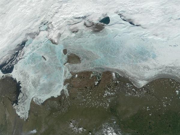 Море Лаптевых усеяно бытовым пластиком