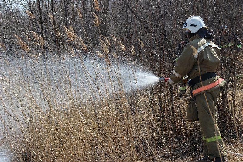 Хабаровск заволокло густым дымом от палов и бытовых пожаров