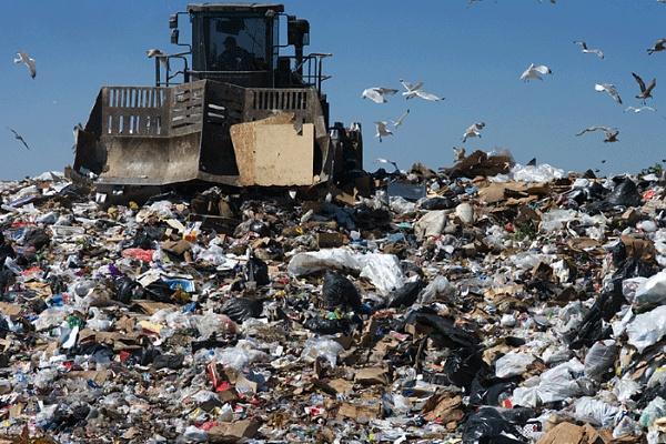 Зачем нужно сортировать мусор?