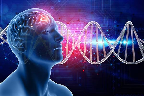 Есть ли универсальный разум, или квантовое сознание - миф?