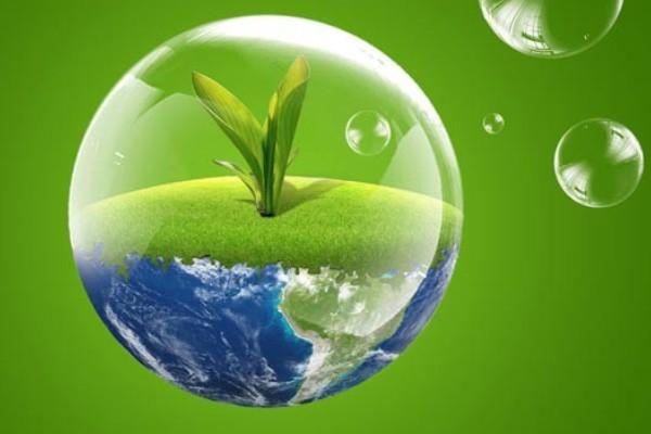Самые важные межгосударственные исследования по экологии
