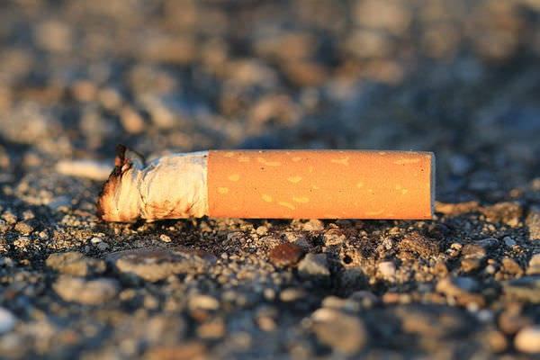 WSJ: токсичные элементы в окурках сигарет - угроза экологии