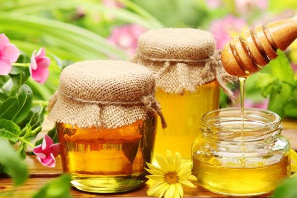Пчеловоды Франции заявили о грядущем росте цен на мед из-за погоды