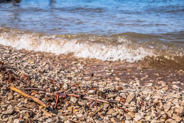 Жители Находки очистили пляж от мусора