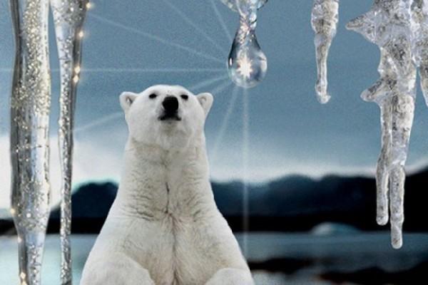 Что может спасти Землю от глобального потепления?