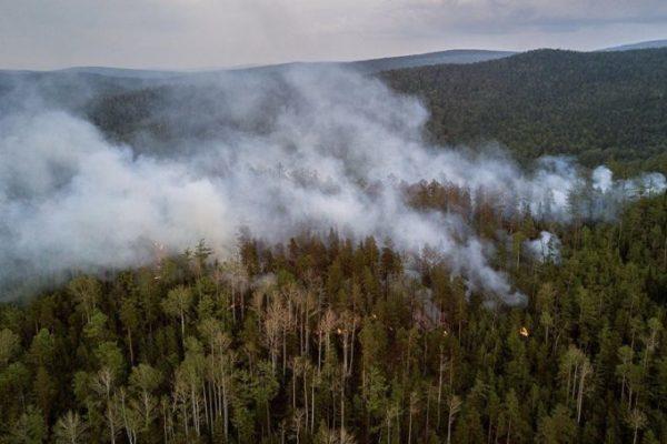 Жители более 100 поселений Иркутского региона задыхаются от дыма лесных пожаров