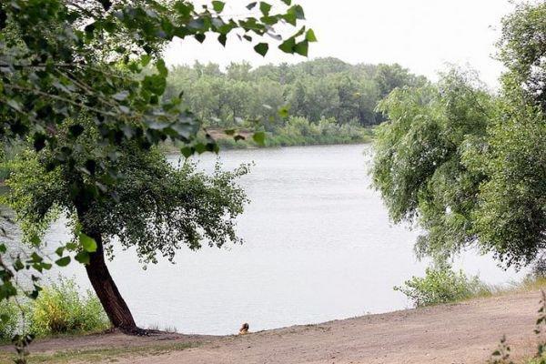 Оренбургская Зауральная роща станет центральным парком