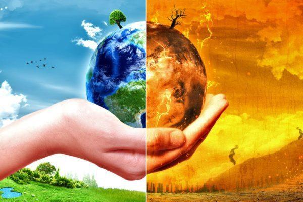 Как обеспечить всю планету пищей и не нанести непоправимый вред природе?