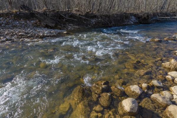 Ученые обеспокоены исчезновением ручьев в Нижегородской области