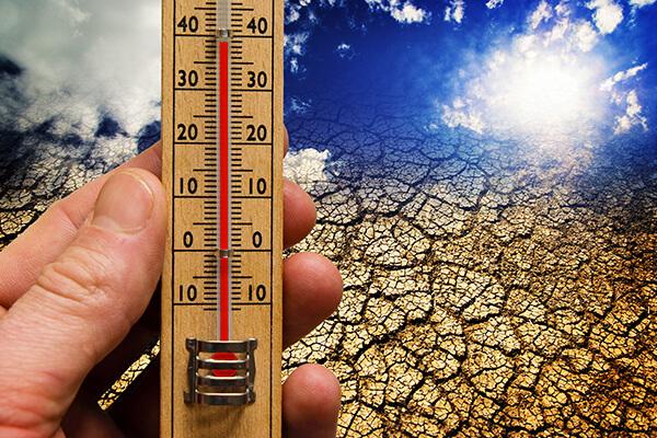 Глобальное потепление: почему о нем важно знать