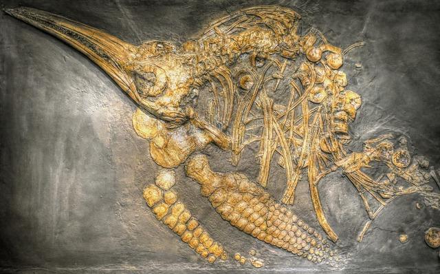 Палеонтологи установили возраст останков птиц-гигантов, найденных в Антарктиде