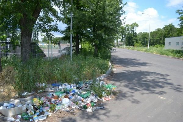 Коммунальщики Владивостока очищают пляжи от мусора