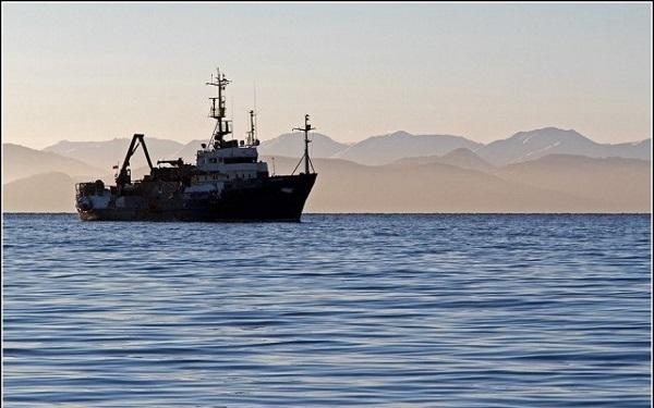 В Канаде растет смертность на рыбопромысловом производстве