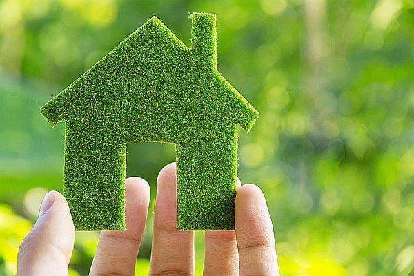 Экологичный образ жизни: 10 эко-привычек