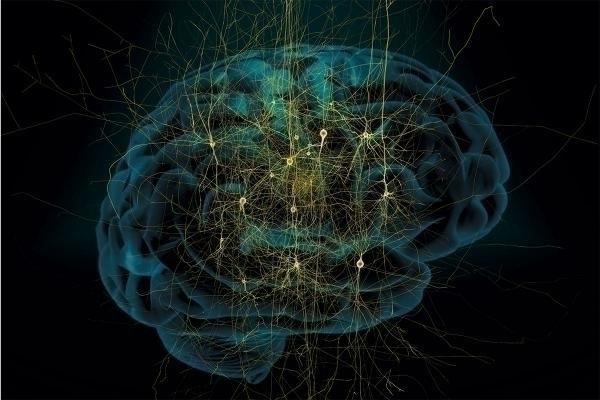 Нити, вживляемые в мозг, способны считывать информацию