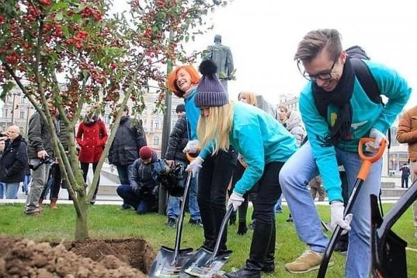 Свыше 5 тысяч деревьев посадят осенью в Москве