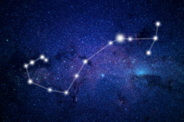 Древнему Скорпиону более 4  млн лет и другие астрологические факты о созвездии