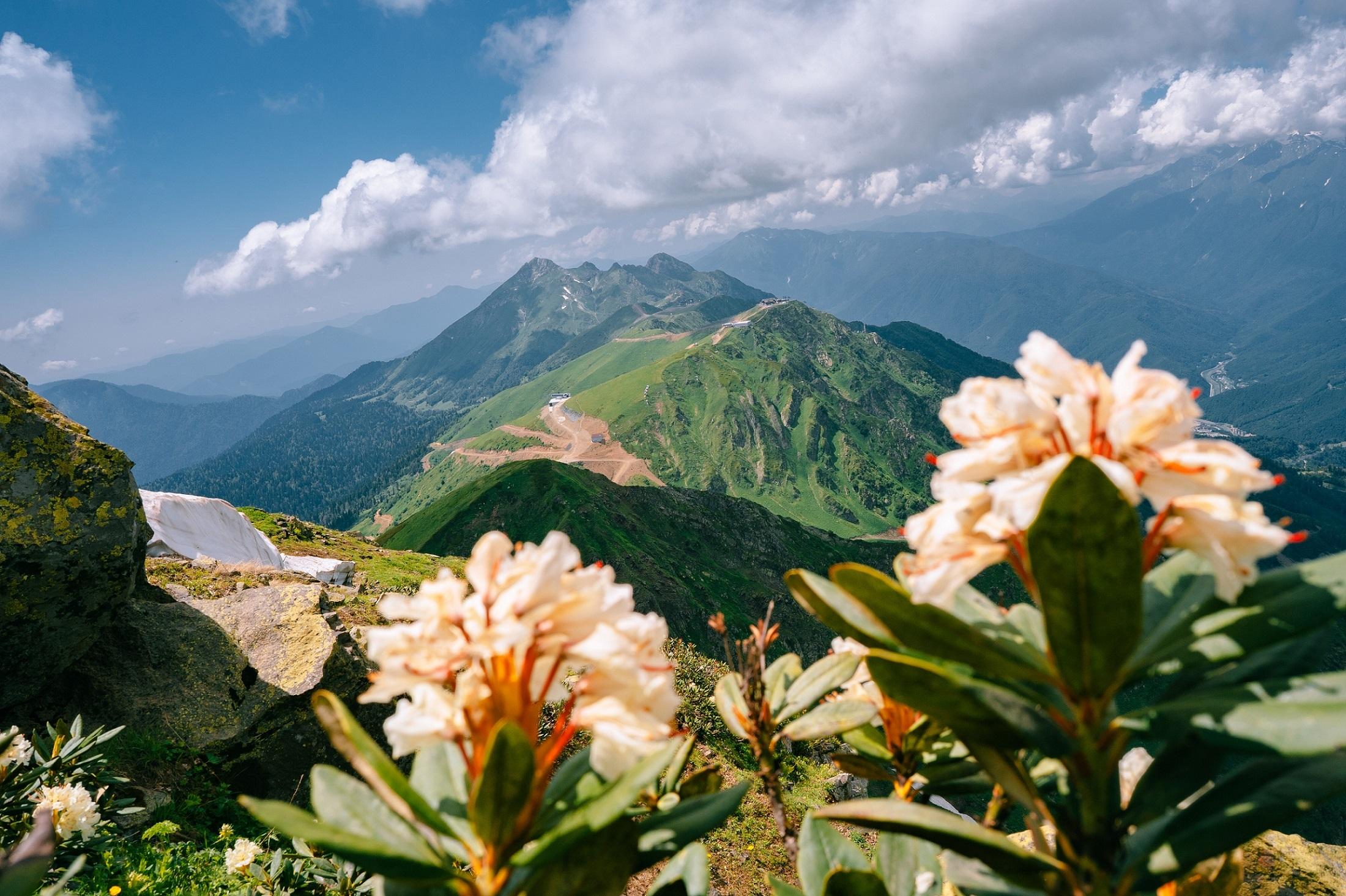 В горах Сочи начнут внедрять зеленые стандарты в туризме