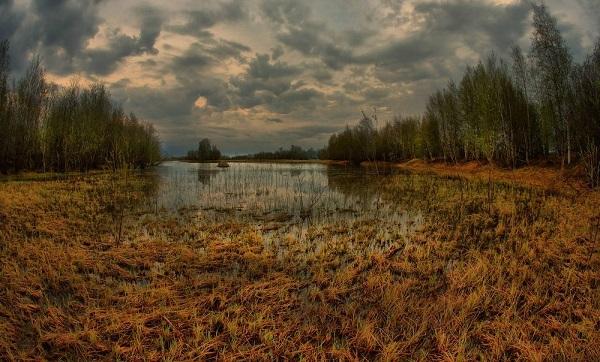 Самые гигантские болота на планете