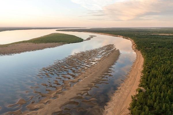 Пришельцы могут погубить экосистему рек Коми