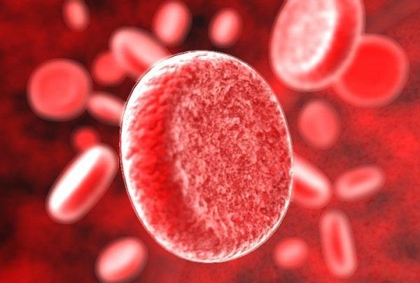 Ученые: болезни человека зависят от группы крови