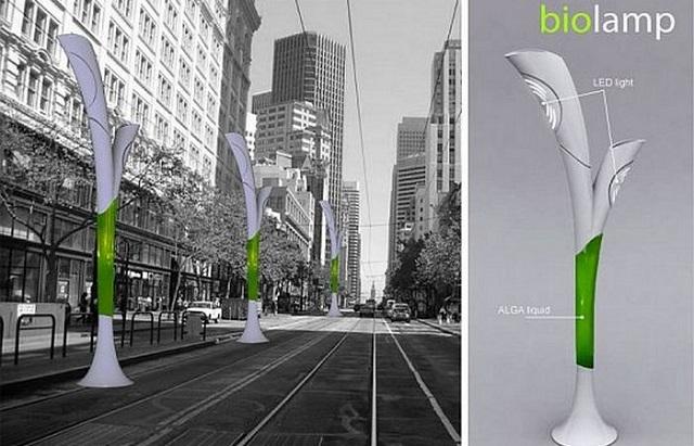 Технологии будущего: а казалось бы просто зеленые водоросли. 2422.jpeg