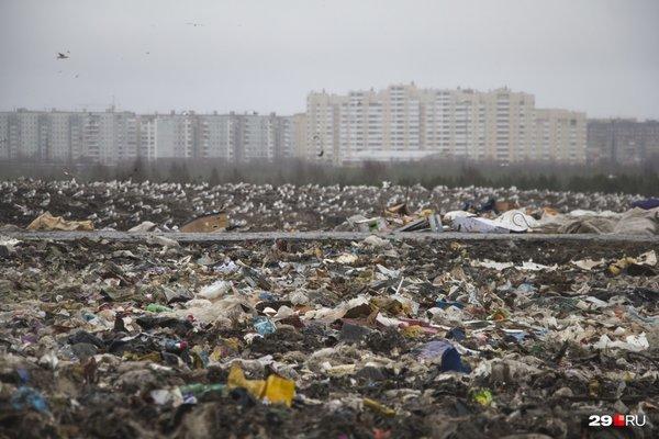 Власти Архангельска проведут «мусорную реформу» на деньги населения