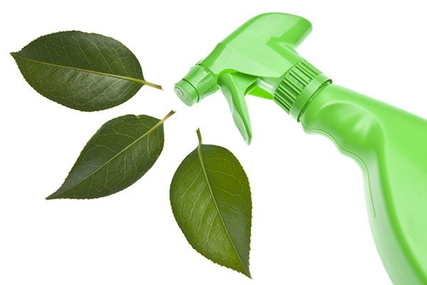 Экологически безвредные альтернативы бытовым предметам