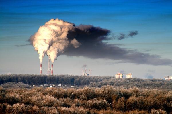 Как экологическая обстановка влияет на продолжительность жизни