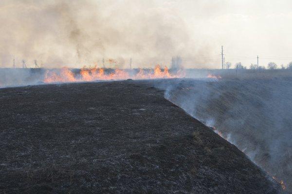 Влияние огня на влажность почвы