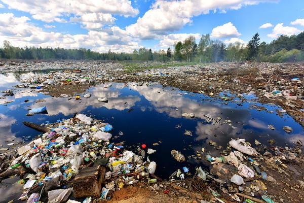 Экологические проблемы Севера: как НАО превращается в гигантскую свалку
