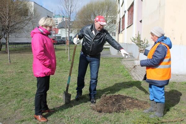 В Смольном жителям Санкт-Петербурга рассказали о правилах высадки деревьев
