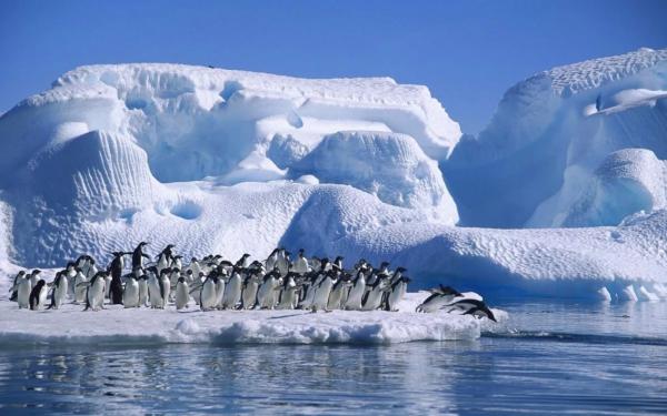 Эксперты раскрыли тайну загадочных явлений, происходящих в Антарктиде
