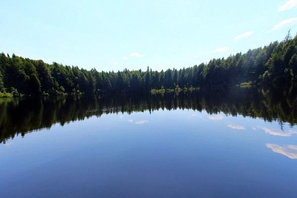 Ученые объяснили, кто ревет на кировском озере