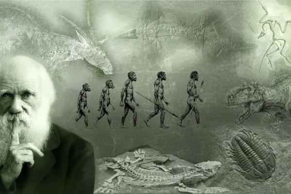 Эрнст Геккель - создатель науки экологии