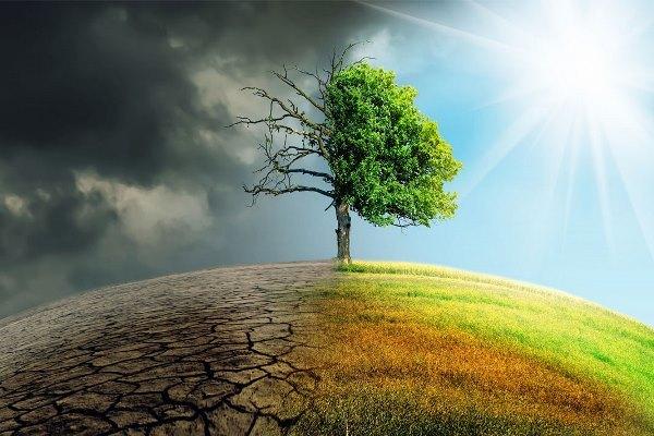 Ученые посчитали наши шансы остановить изменение климата